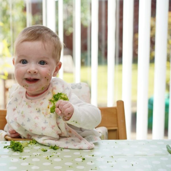 Baby Led Weaning For Beginners