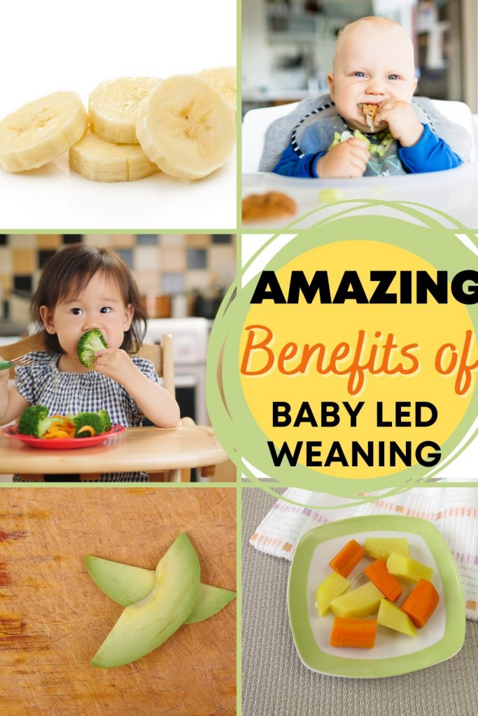 baby led weaning benefits and images of first blw foods